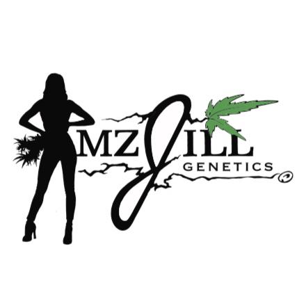 mz jill genetics black logo